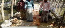 পেকুয়ায় ব্যক্তিগত উদ্যোগে চলছে রাস্তার সংস্কার কাজ
